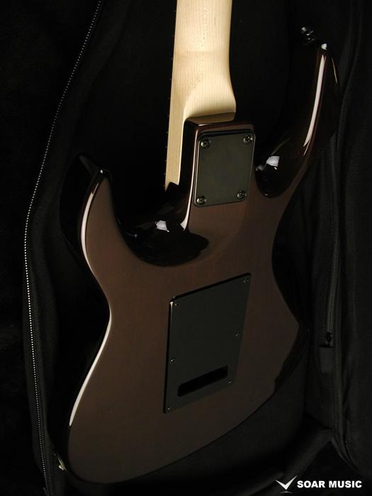 http://bacchusdo.com/photo2/guitar/jtd04/bkbs12.jpg